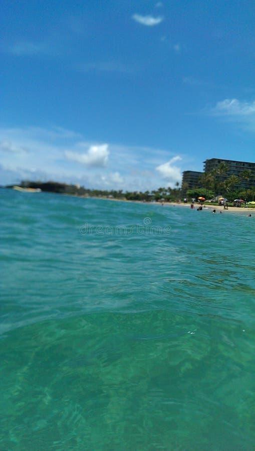 毛伊海滩在夏威夷 免版税库存照片