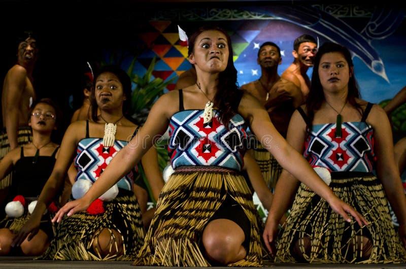 毛利人文化展示 免版税库存照片