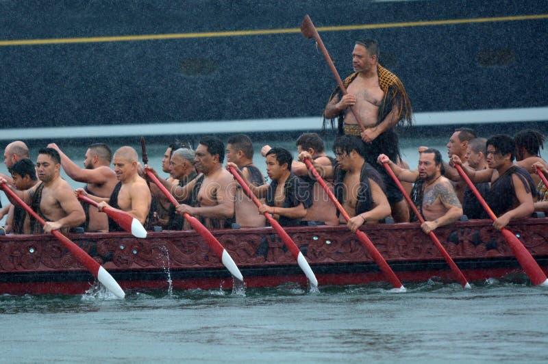 毛利人waka遗产航行在奥克兰,新西兰 库存图片