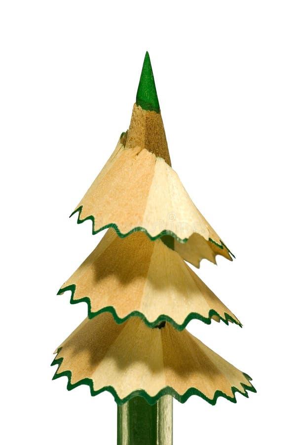 毛皮棍子结构树 库存照片