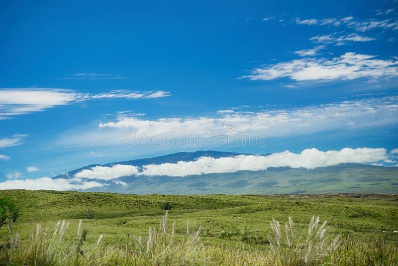 毛纳基山看法大岛的夏威夷 图库摄影