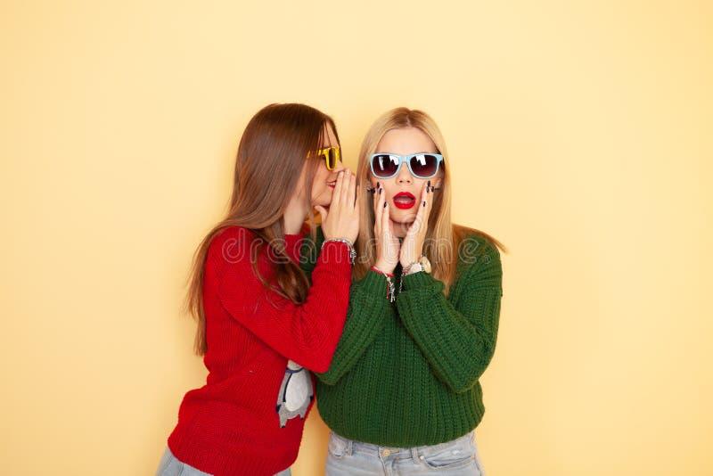 毛线衣和太阳镜的两个滑稽的美丽的行家女孩 概念冬天和时尚 免版税库存图片