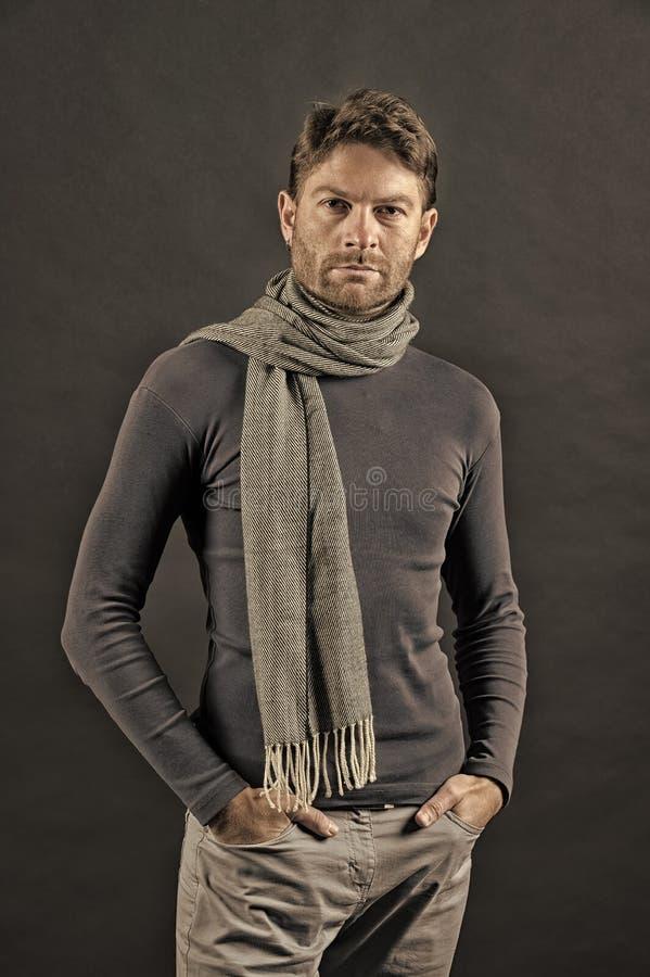 毛线衣的,围巾强壮男子用在口袋的手 库存照片