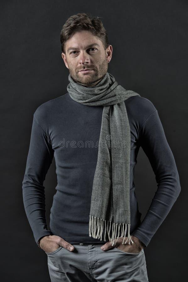 毛线衣的,围巾强壮男子用在口袋的手 免版税库存照片