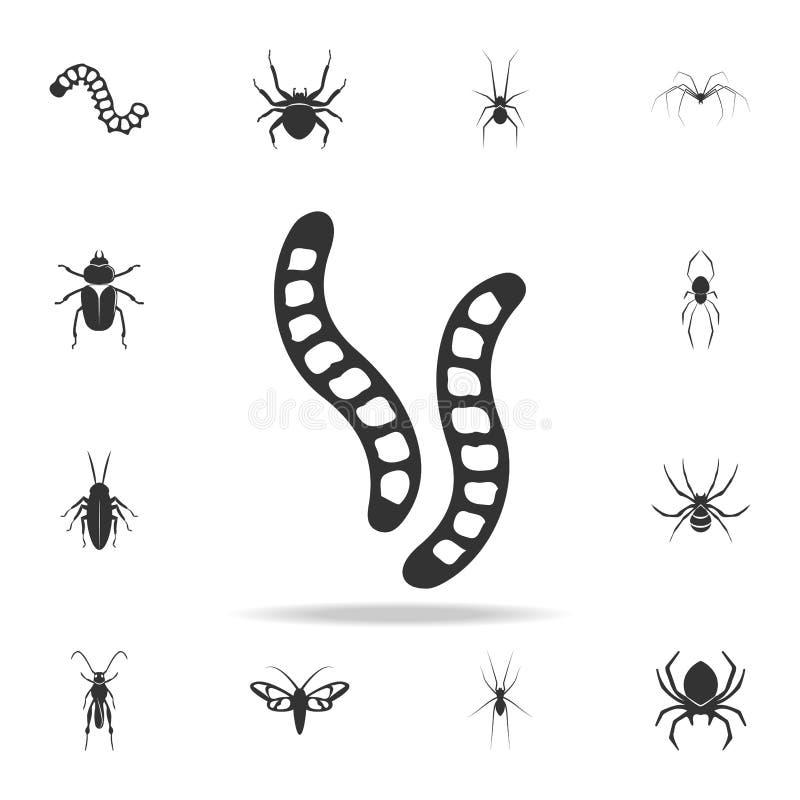 毛虫 详细的套昆虫项目象 优质质量图形设计 其中一个网站的汇集象,网d 皇族释放例证