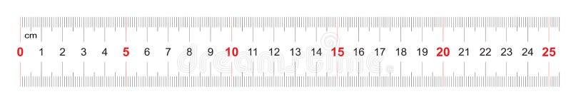250毫米统治者  25厘米统治者  定标栅格 价值分裂1 mm 两面的测量仪器 库存例证
