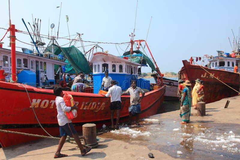 民工卸载从小船的鱼 免版税库存照片