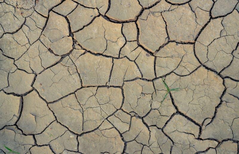 气候变化和干旱地 水危机 干旱气候 裂土 全球变暖 环境问题 自然灾害 干 免版税库存照片