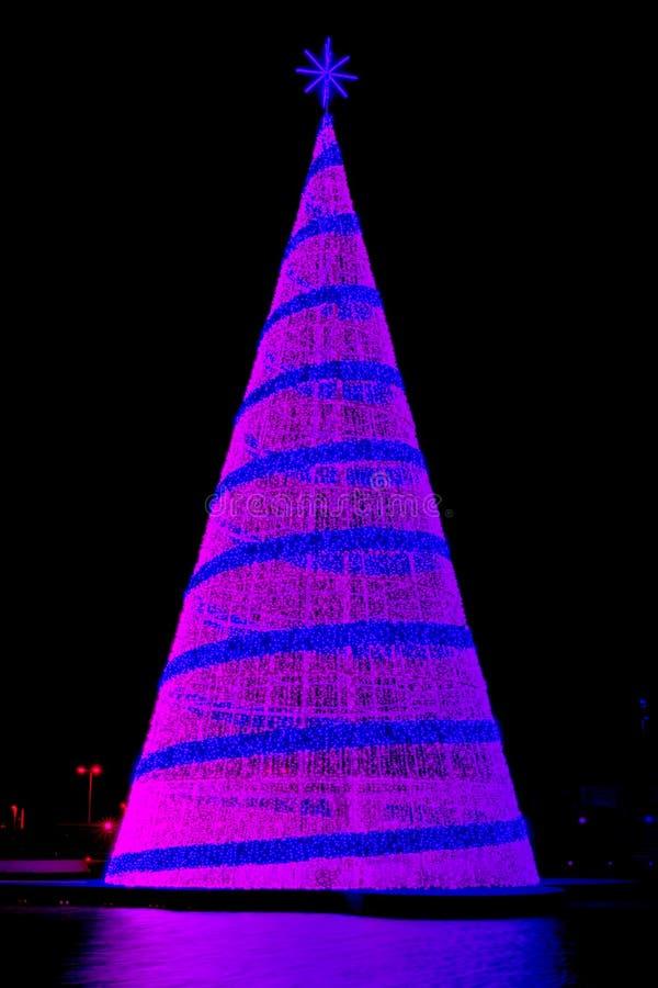 氖色的室外圣诞树 免版税图库摄影