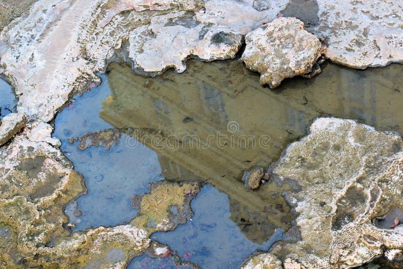 氢化硫治疗矿泉水水池的反射房子在自然温泉的在卡洛维变化,捷克 免版税图库摄影