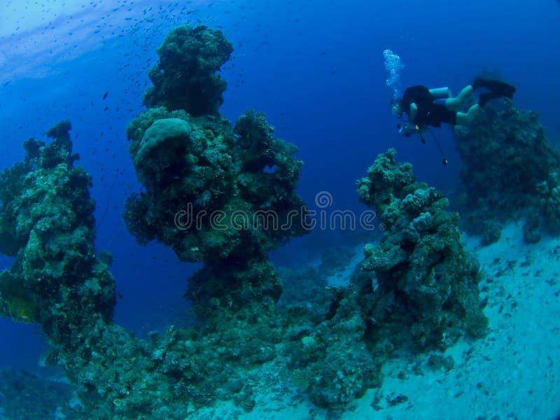 水下横向的水肺 免版税库存照片
