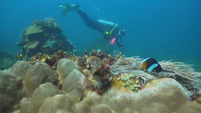 水下潜水员的水肺 菲律宾,民都洛 图库摄影
