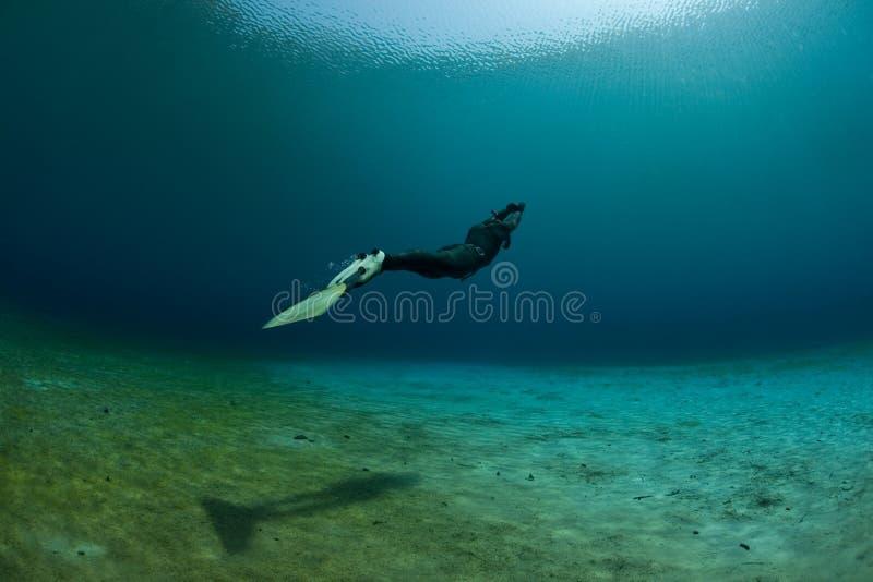 水下潜水员的游泳 库存图片