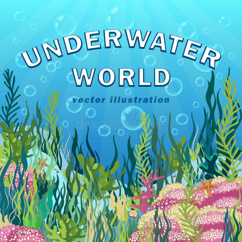 水下的世界背景,海景与礁石和多彩多姿海藻,珊瑚,海底,手拉的现实海洋,蓝色 向量例证