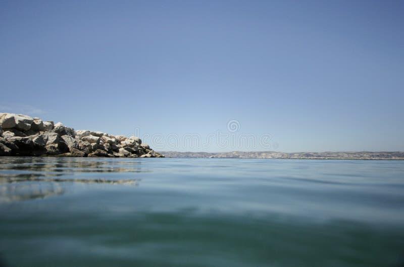 水下的海运 免版税库存照片