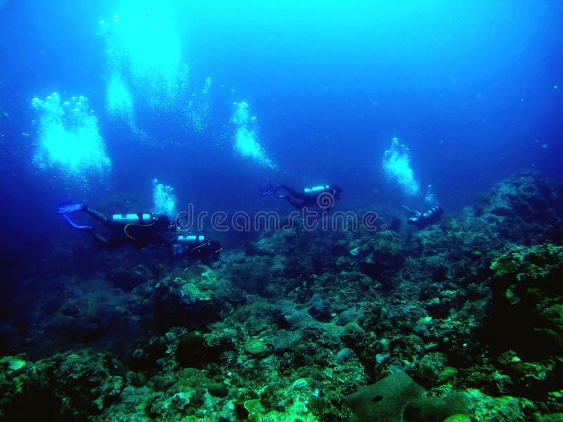 水下的海 库存照片