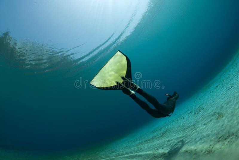 水下的潜水员 免版税库存照片