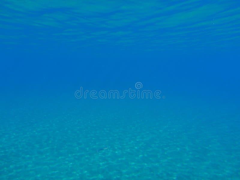 水下的生活在Kolona双海湾基斯诺斯岛海岛基克拉泽斯希腊,爱琴海 库存照片