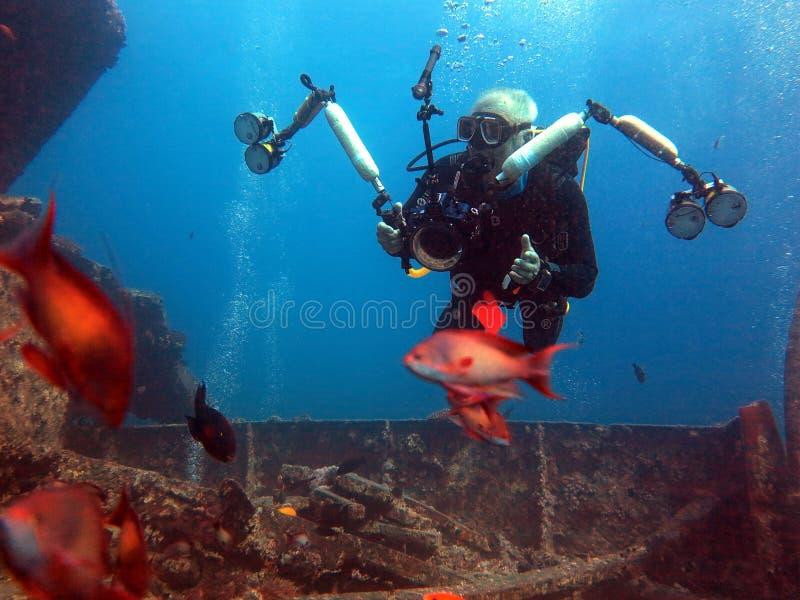 水下的生活:珊瑚在热带水域中 免版税库存图片