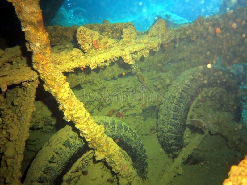 水下的生活:珊瑚在热带水域中 库存图片