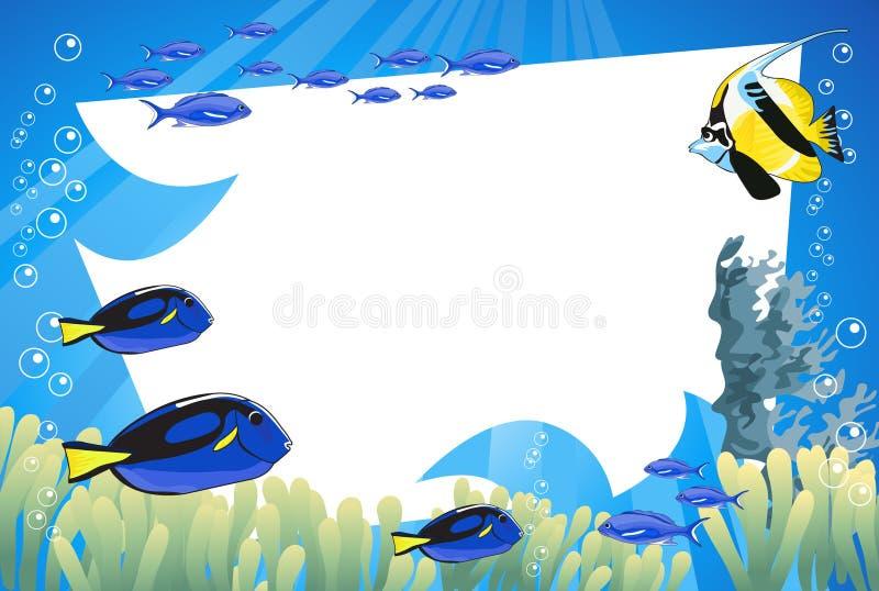 水下的生活 皇族释放例证