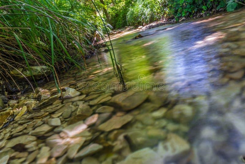 水与在水面下岩石的小河特写镜头 库存照片