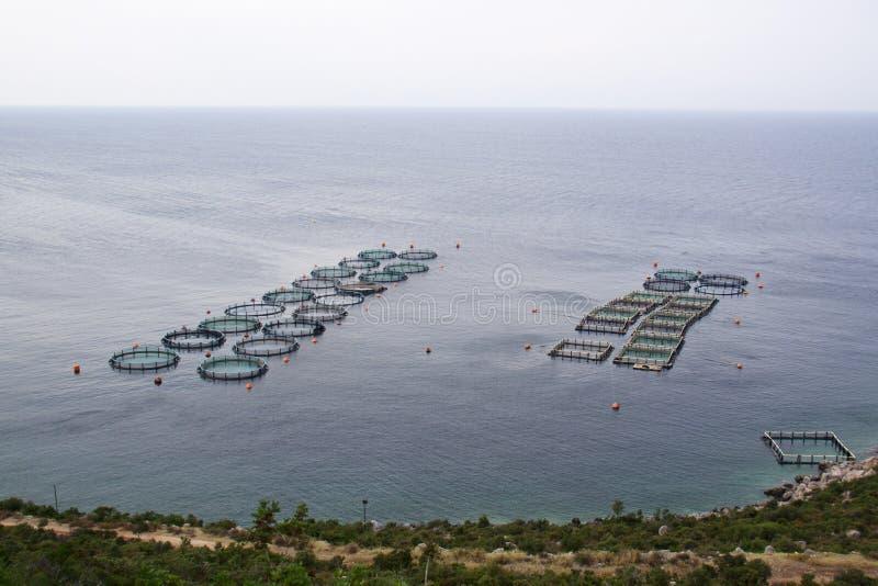 水产养殖 图库摄影