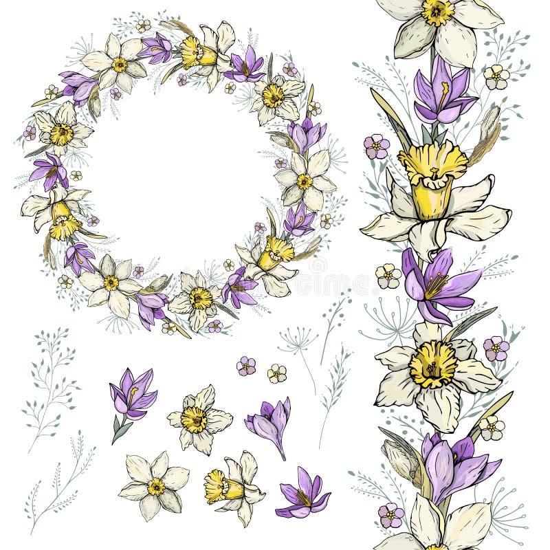 水仙和番红花春天花圈、刷子和元素 库存例证