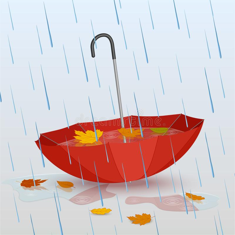 水伞在雨中,水坑和下落的黄色叶子 向量例证