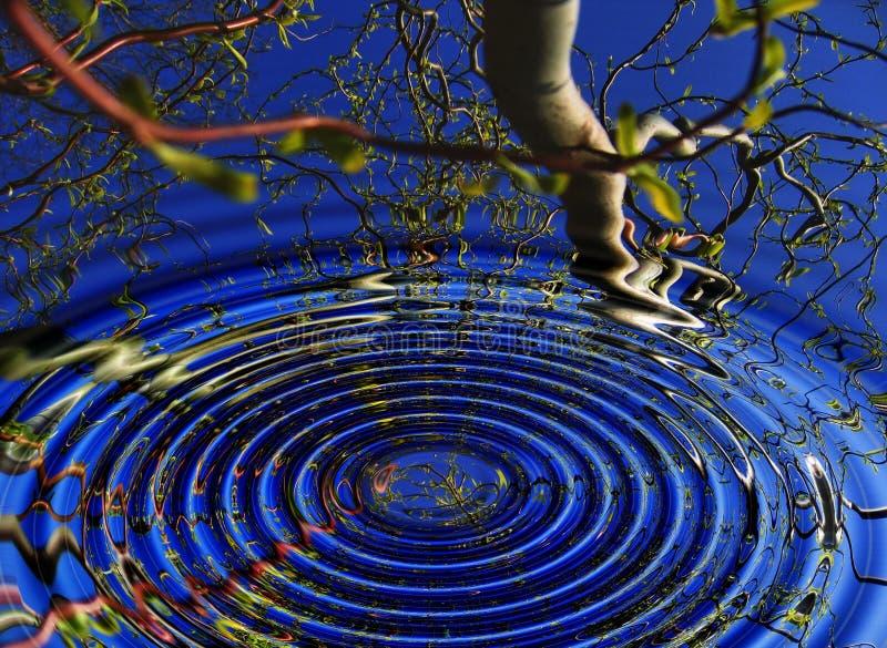 水反射树环