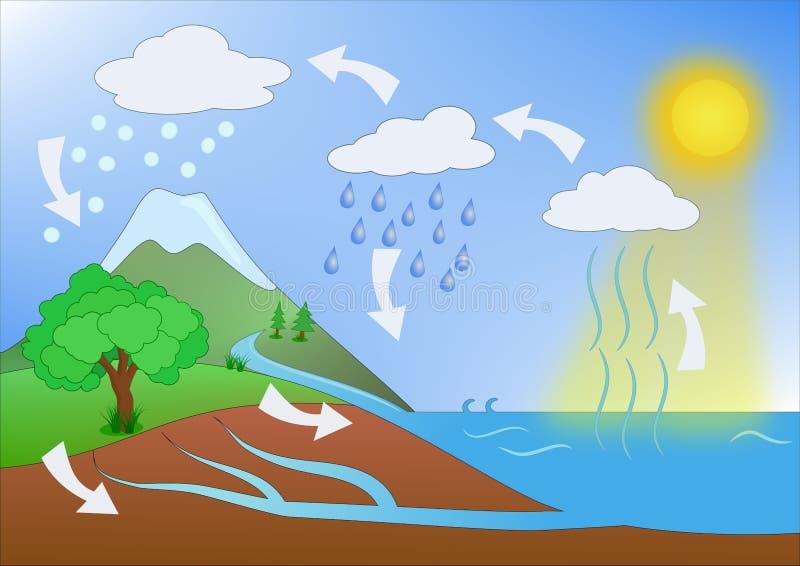 水周期概念例证 向量例证