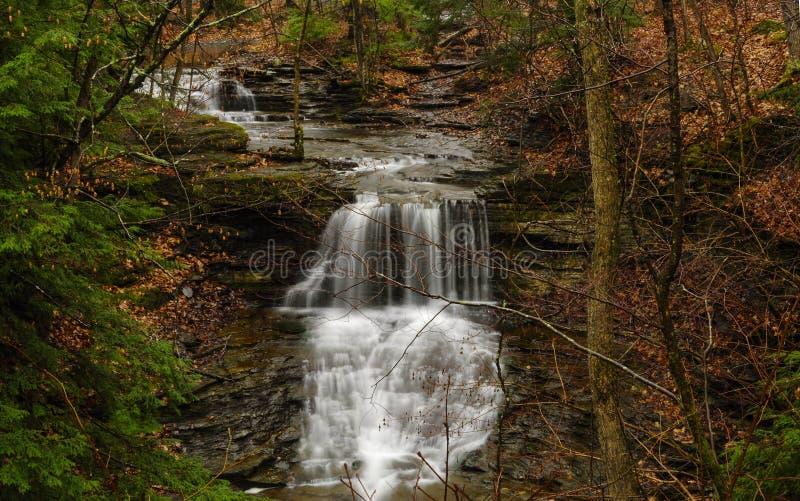 水在秋天在约翰博伊德撒切尔国家公园在纽约Sta 库存图片