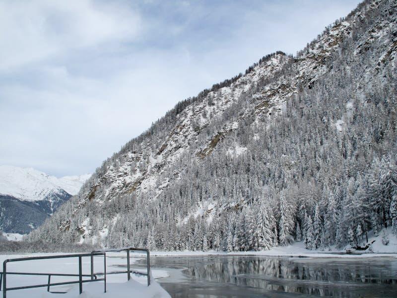 水坝冰 库存照片