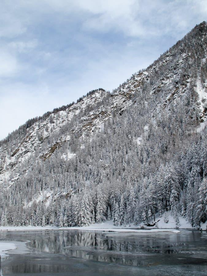 水坝冰 图库摄影