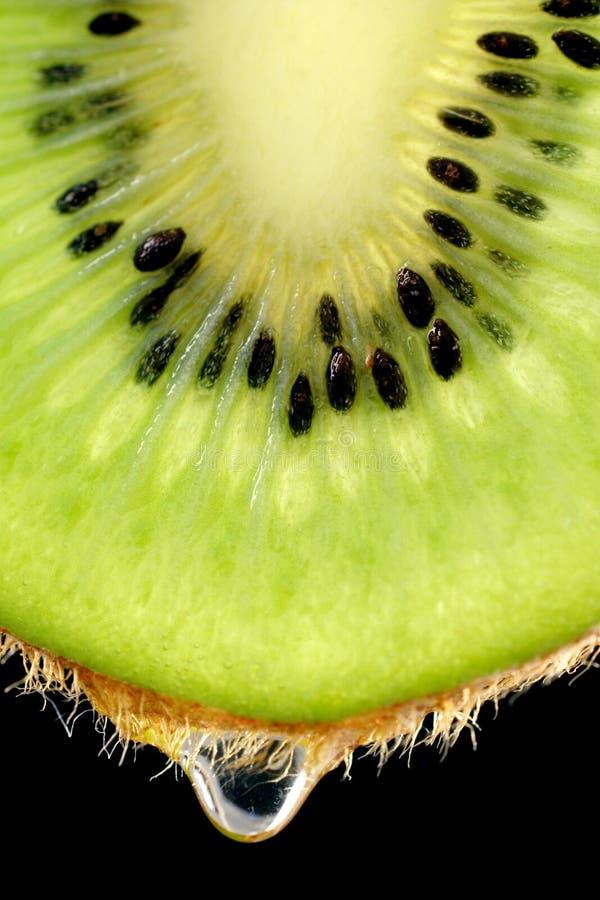 水多的果子 库存照片