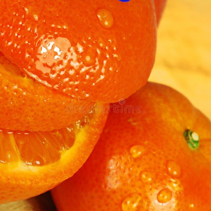 水多的桔子 免版税图库摄影