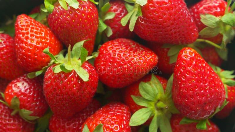 水多的莓果维多利亚004 免版税图库摄影