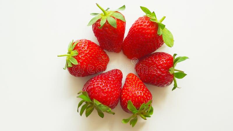 水多的莓果维多利亚005 库存照片