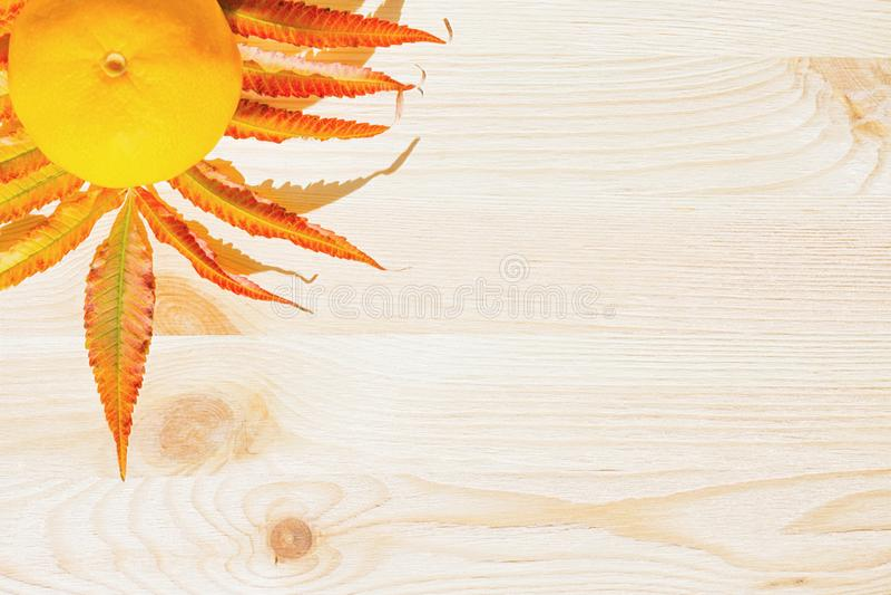 水多的黄色普通话和分支与橙色叶子 库存图片