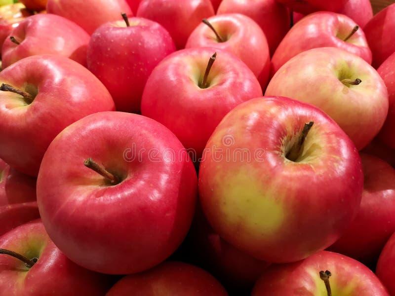 水多,明亮的红色和绿色mutsu苹果,准备待售在一个地方市场上 免版税图库摄影
