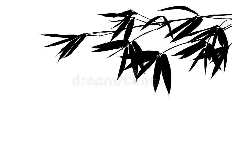 水平的与在白色背景隔绝的叶子的剪影竹分支 免版税库存照片