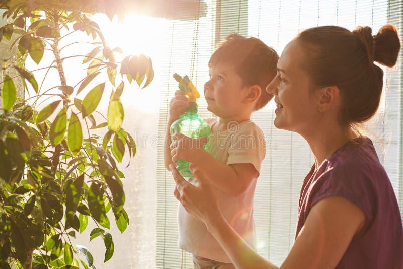 水平的射击英俊小做孩子拿着粉碎机,帮助母亲一起喷洒和浇灌国内花,立场agai 库存图片