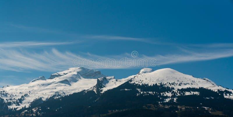 水平的山风景在有森林和积雪覆盖的峰顶的瑞士在天空蔚蓝下 库存照片