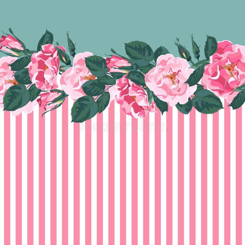 水平的条纹图形与,上升了,牡丹、叶子和芽 逗人喜爱的婚礼花卉传染媒介设计框架 库存例证