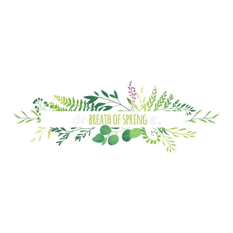 水平的横幅-绿色留下花分支 库存例证