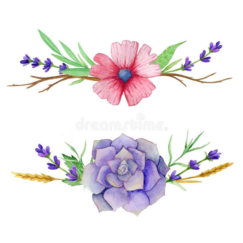 水平的水彩套多汁植物、叶子、花和老分支 对邀请,贺卡,盖子 向量例证