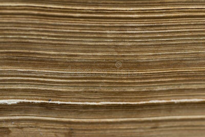 水平的老年迈的黄皮书页接近宏观射击 免版税库存图片