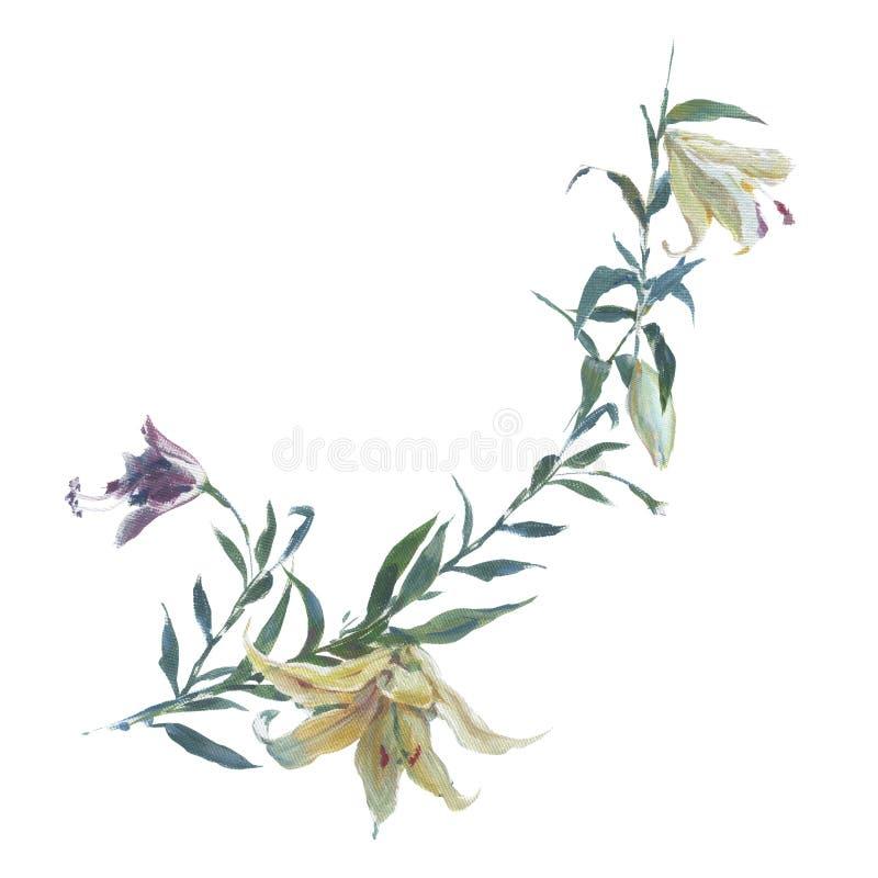 水彩、叶子油画和花,在白色 皇族释放例证