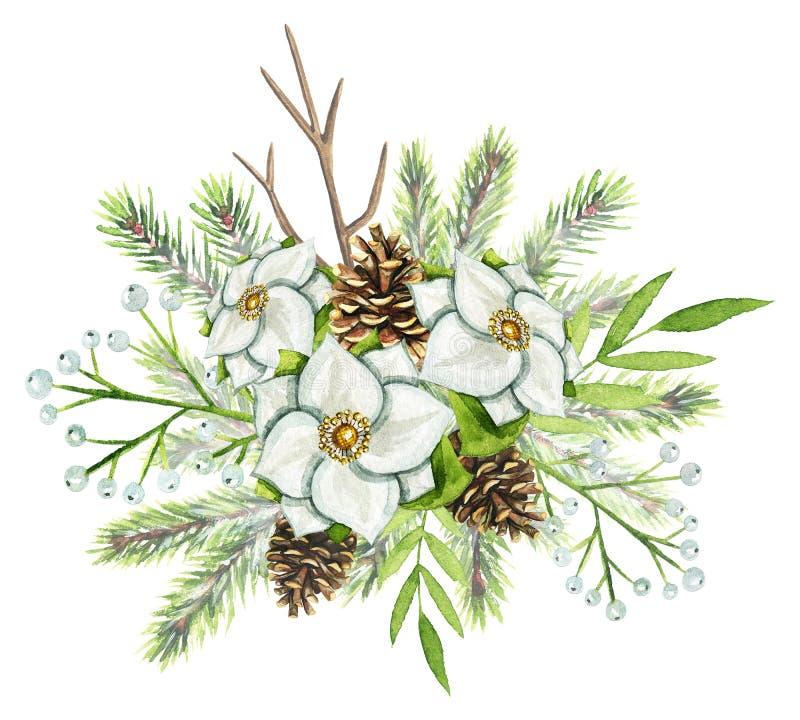 水彩与云杉, pinecones,白花的圣诞节花束 皇族释放例证