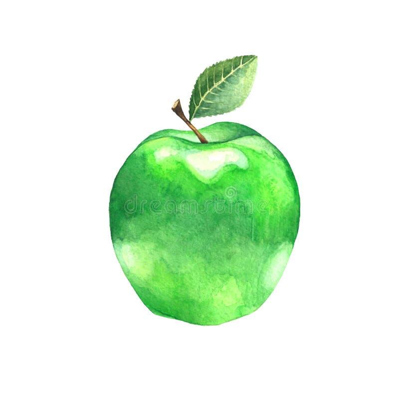 水彩与叶子的绿色苹果 免版税库存图片